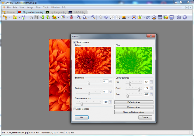 Download XnView  XnView Software  XnView