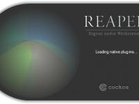 Cockos REAPER 5.987 Crack Download HERE !